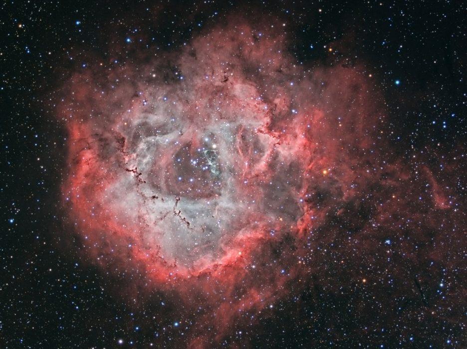 la nebulosa de la rosa